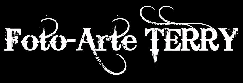 Foto Arte Terry Logo